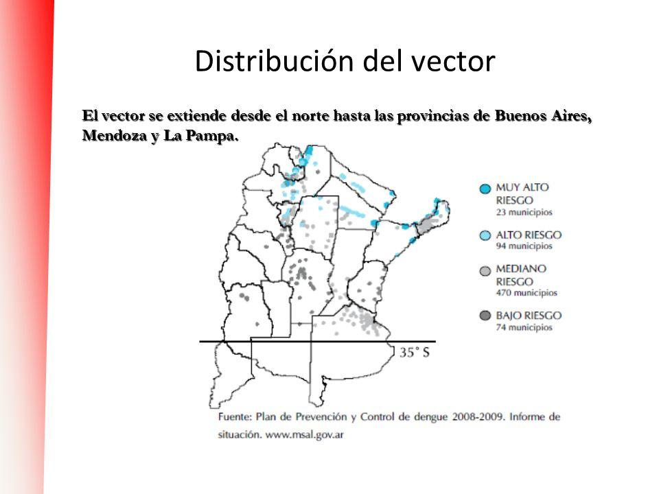 Distribución del vector