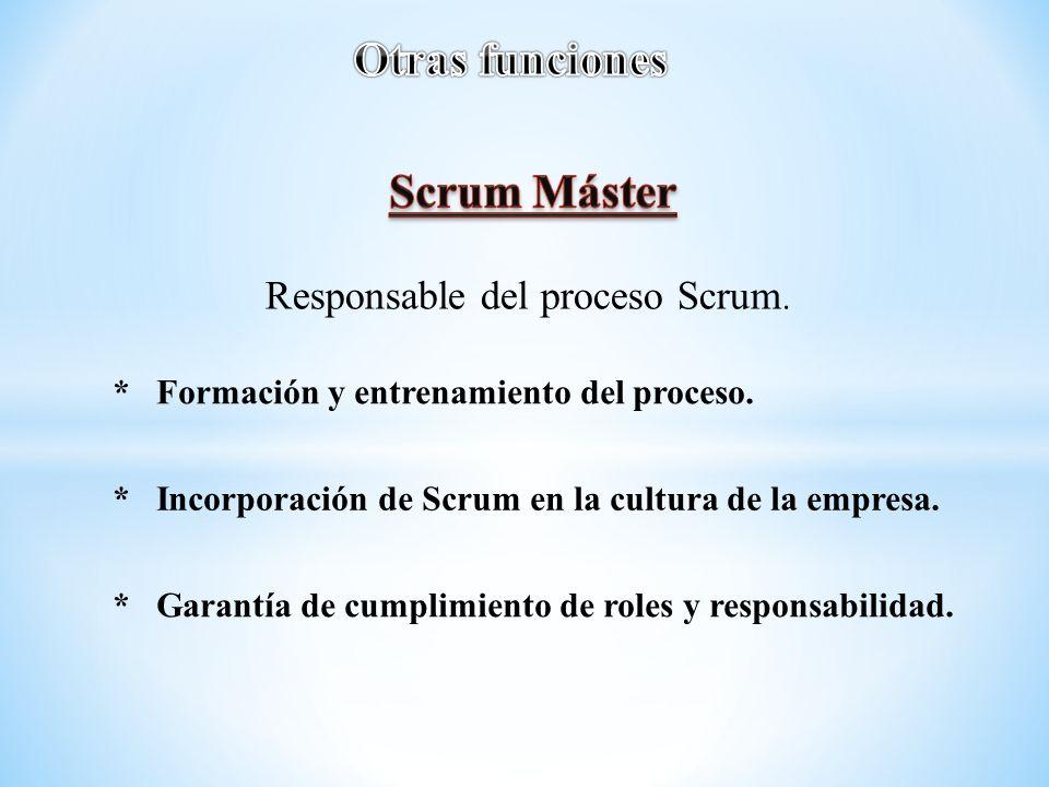 Responsable del proceso Scrum.