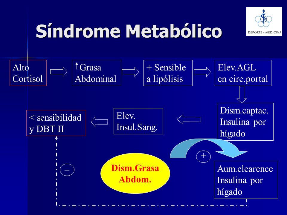 Síndrome Metabólico Alto Cortisol Grasa Abdominal + Sensible