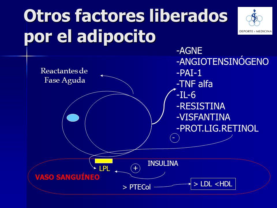 Otros factores liberados por el adipocito