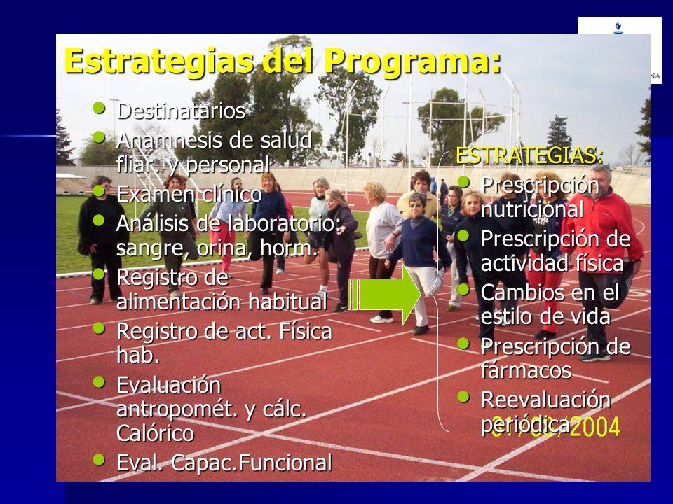 Estrategias del Programa:
