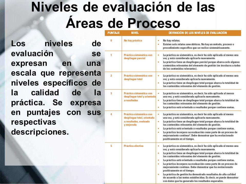 Niveles de evaluación de las Áreas de Proceso