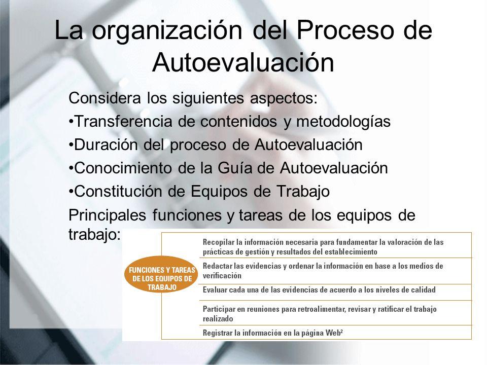 La organización del Proceso de Autoevaluación