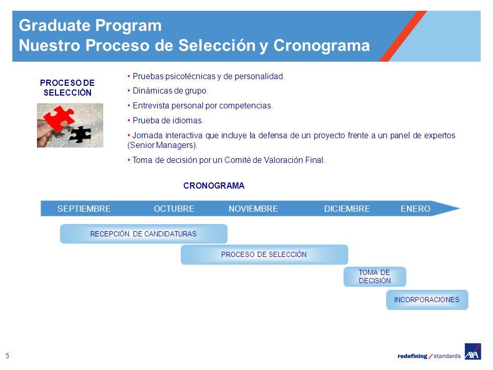 Nuestro Proceso de Selección y Cronograma