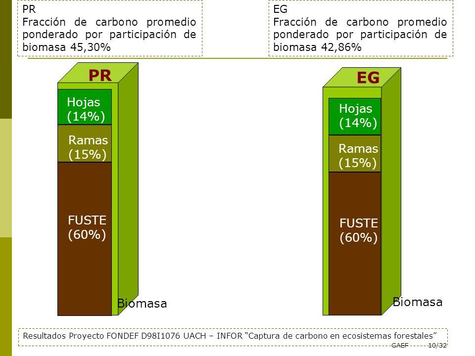 PR EG Hojas (14%) Hojas (14%) Ramas (15%) Ramas (15%) FUSTE FUSTE