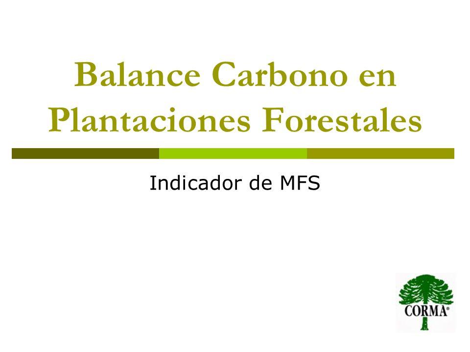 Balance Carbono en Plantaciones Forestales