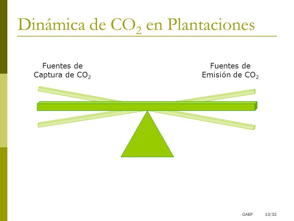 Dinámica de CO2 en Plantaciones