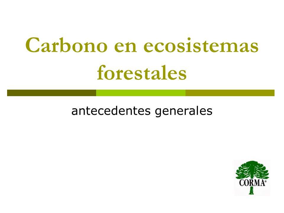 Carbono en ecosistemas forestales
