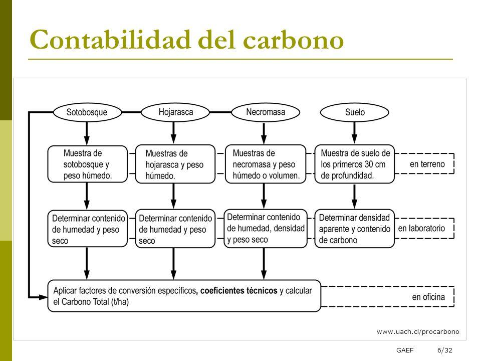 Contabilidad del carbono