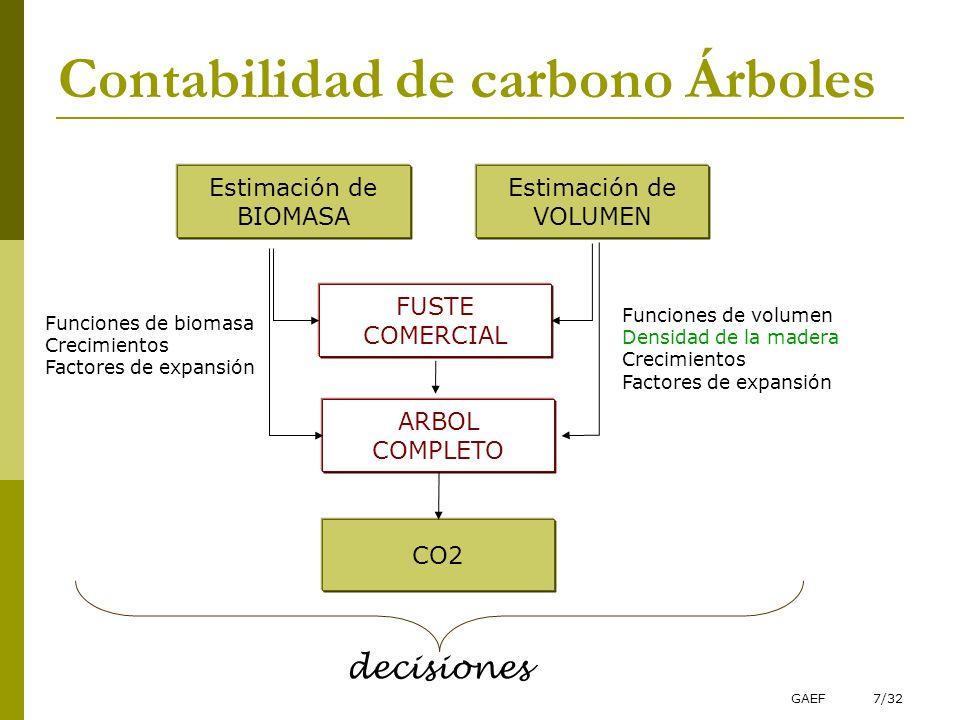 Contabilidad de carbono Árboles