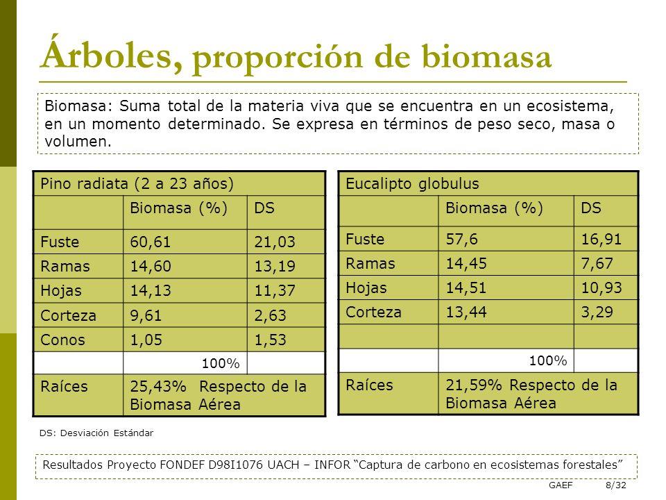 Árboles, proporción de biomasa