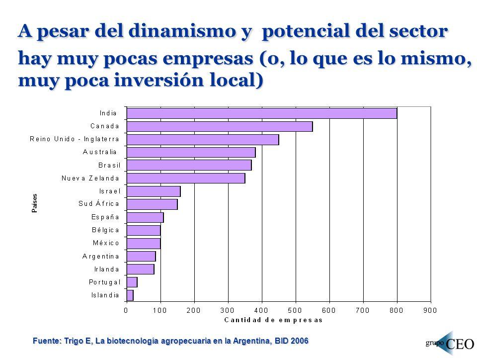 A pesar del dinamismo y potencial del sector hay muy pocas empresas (o, lo que es lo mismo, muy poca inversión local)