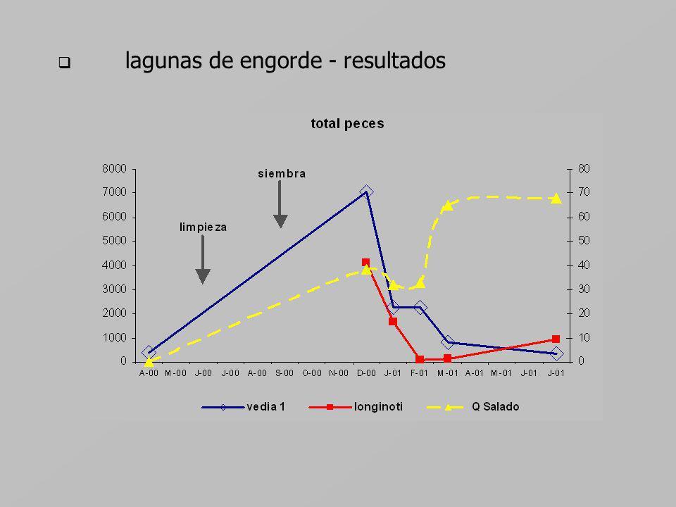 lagunas de engorde - resultados