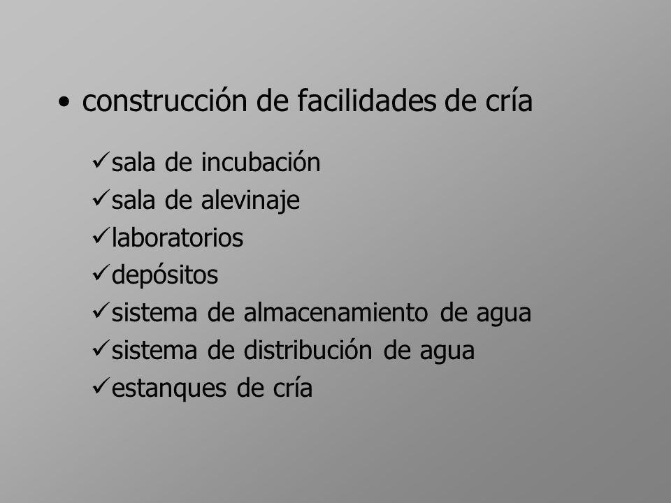 construcción de facilidades de cría