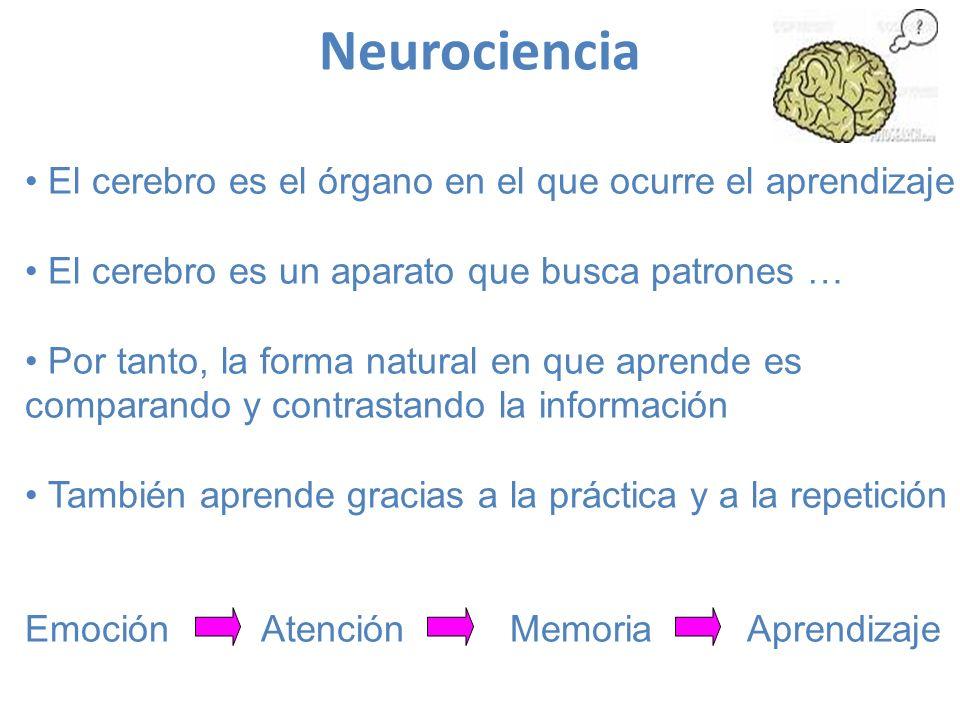 Neurociencia El cerebro es el órgano en el que ocurre el aprendizaje