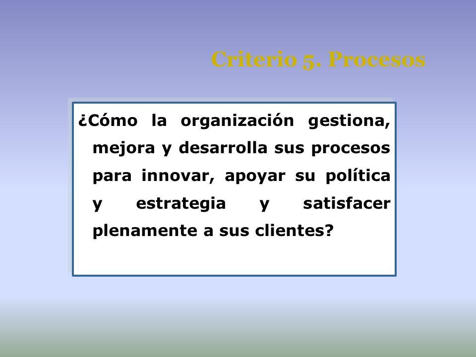 Criterio 5. Procesos