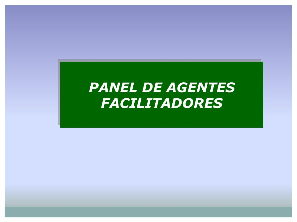 PANEL DE AGENTES FACILITADORES