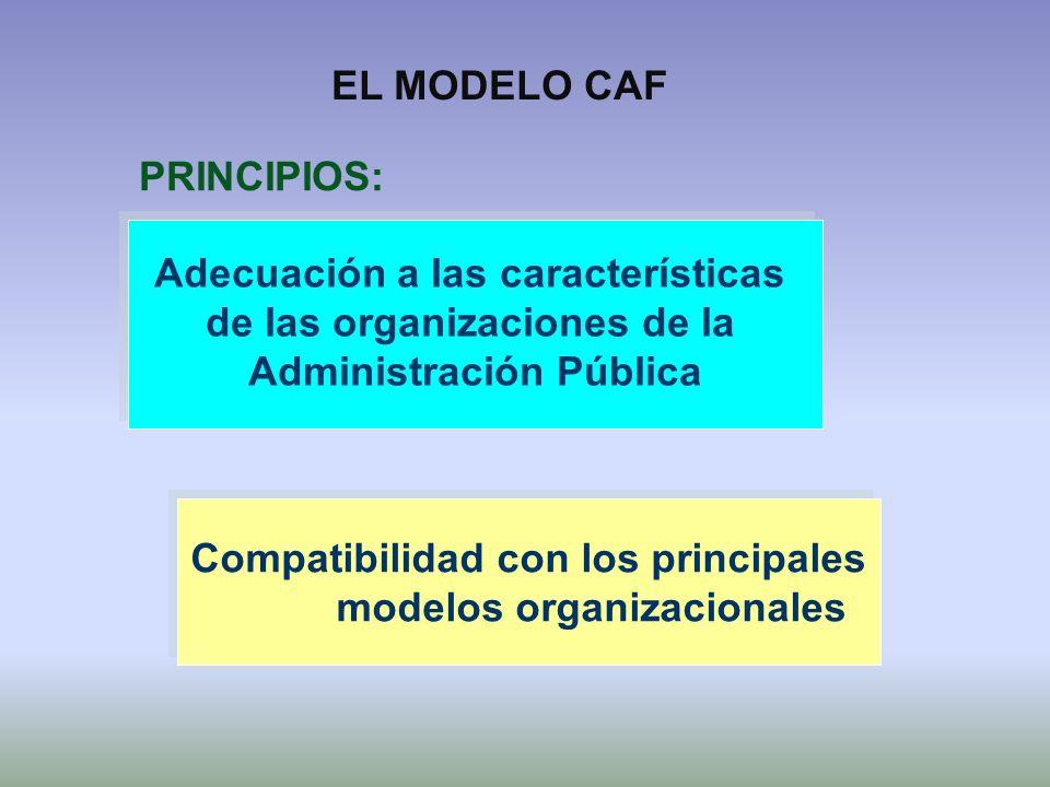 Adecuación a las características de las organizaciones de la