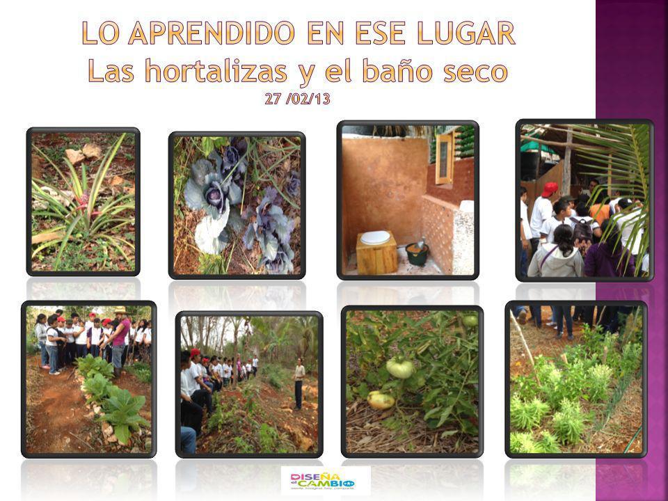 LO APRENDIDO EN ESE LUGAR Las hortalizas y el baño seco 27 /02/13