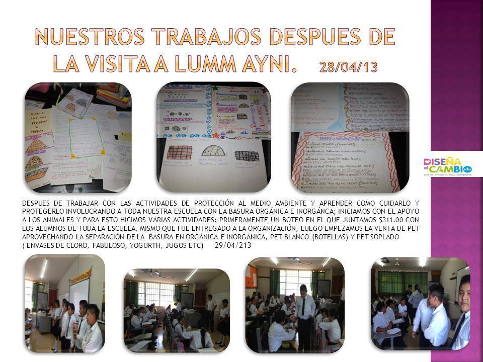 NUESTROS TRABAJOS DESPUES DE LA VISITA A LUMM AYNI. 28/04/13