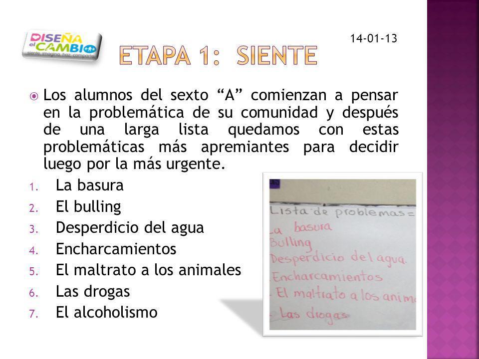 ETAPA 1: SIENTE 14-01-13.