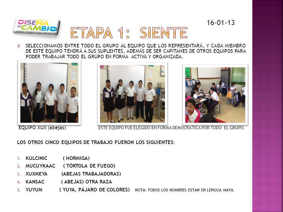 ETAPA 1: SIENTE 16-01-13.