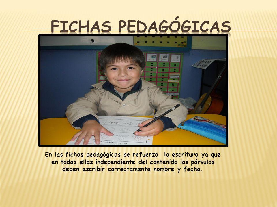 FICHAS PEDAGÓGICAS