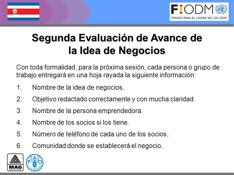 Segunda Evaluación de Avance de la Idea de Negocios