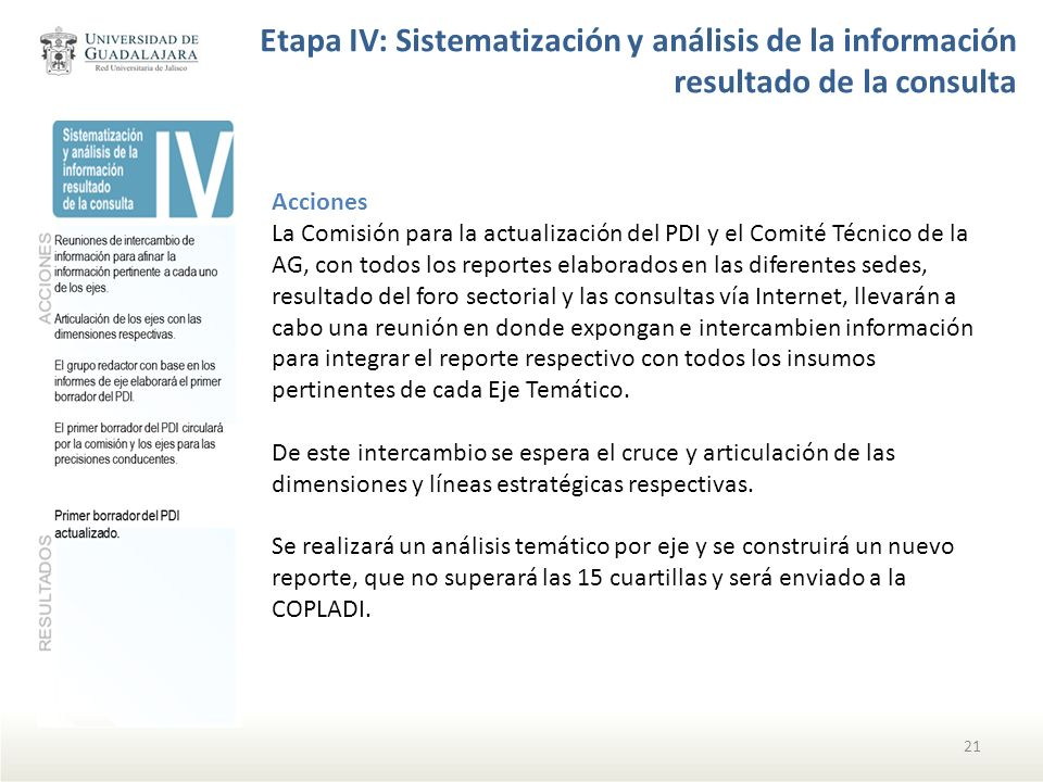 Etapa IV: Sistematización y análisis de la información resultado de la consulta