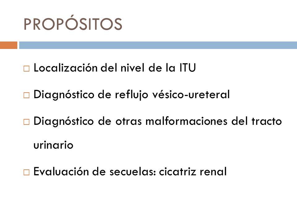 PROPÓSITOS Localización del nivel de la ITU