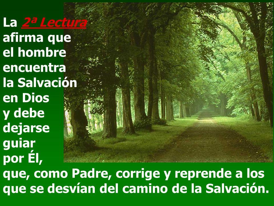 La 2ª Lectura afirma que el hombre encuentra la Salvación en Dios y debe dejarse guiar por Él, que, como Padre, corrige y reprende a los que se desvían del camino de la Salvación.