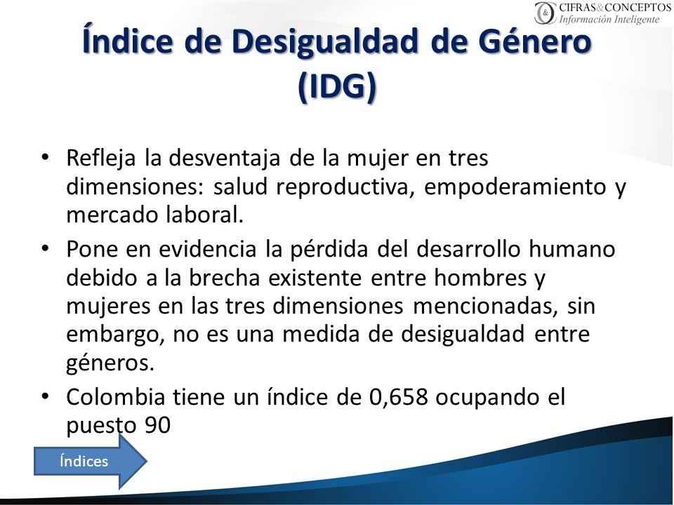 Índice de Desigualdad de Género (IDG)