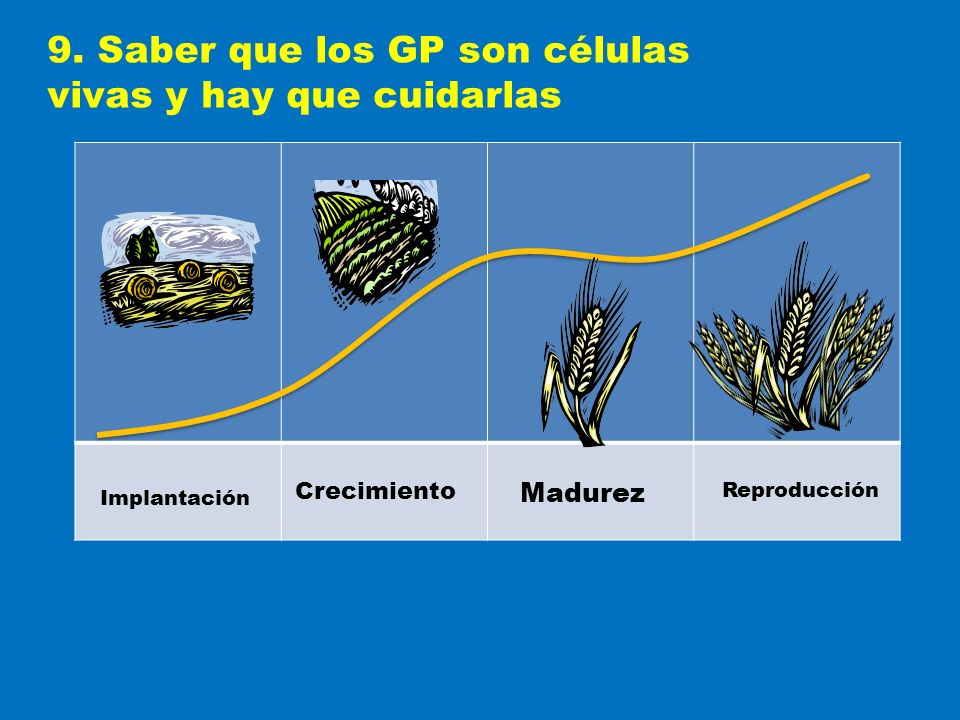 9. Saber que los GP son células vivas y hay que cuidarlas