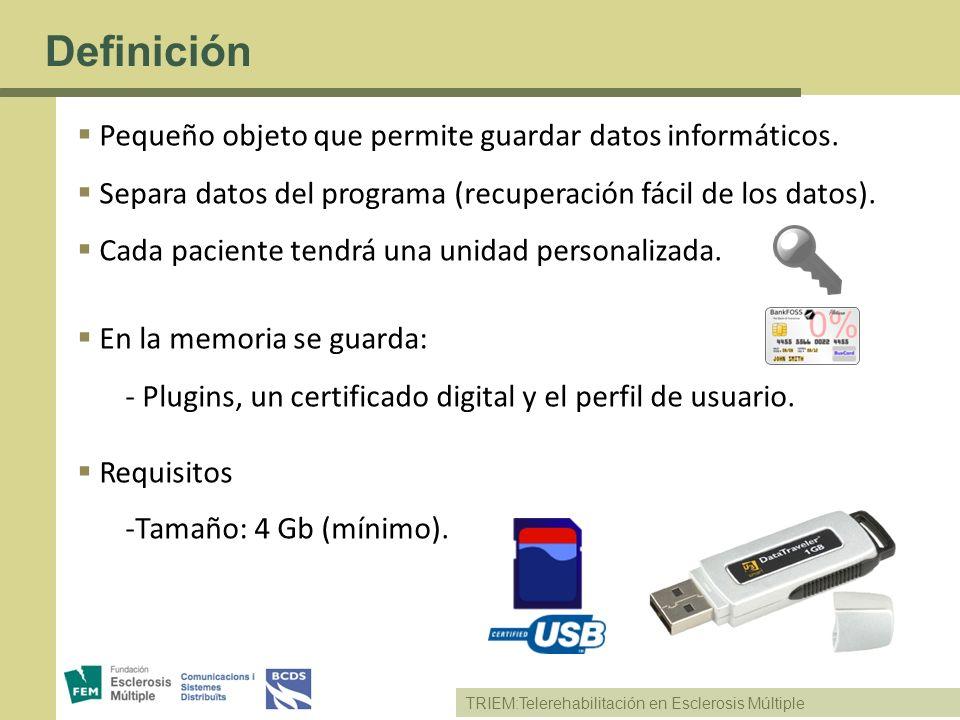 Definición Pequeño objeto que permite guardar datos informáticos.