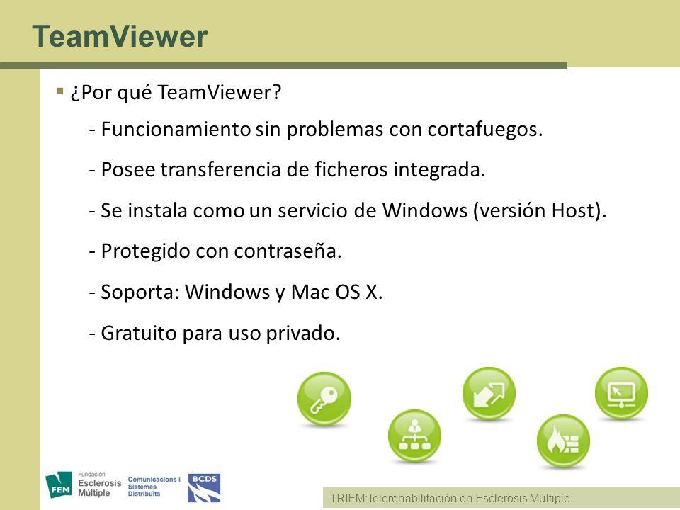 TeamViewer ¿Por qué TeamViewer