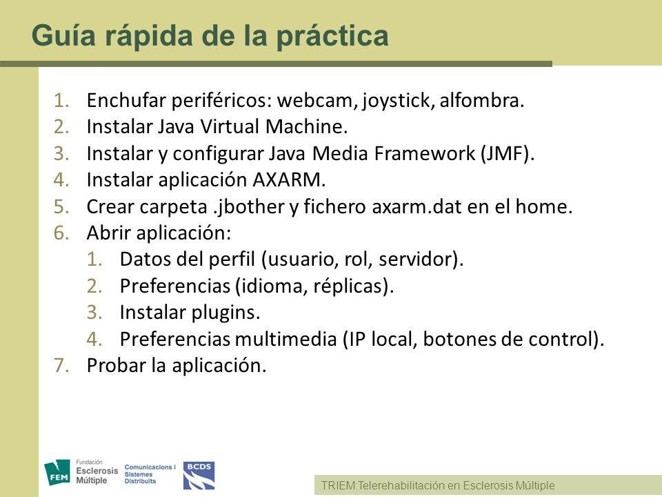 Guía rápida de la práctica