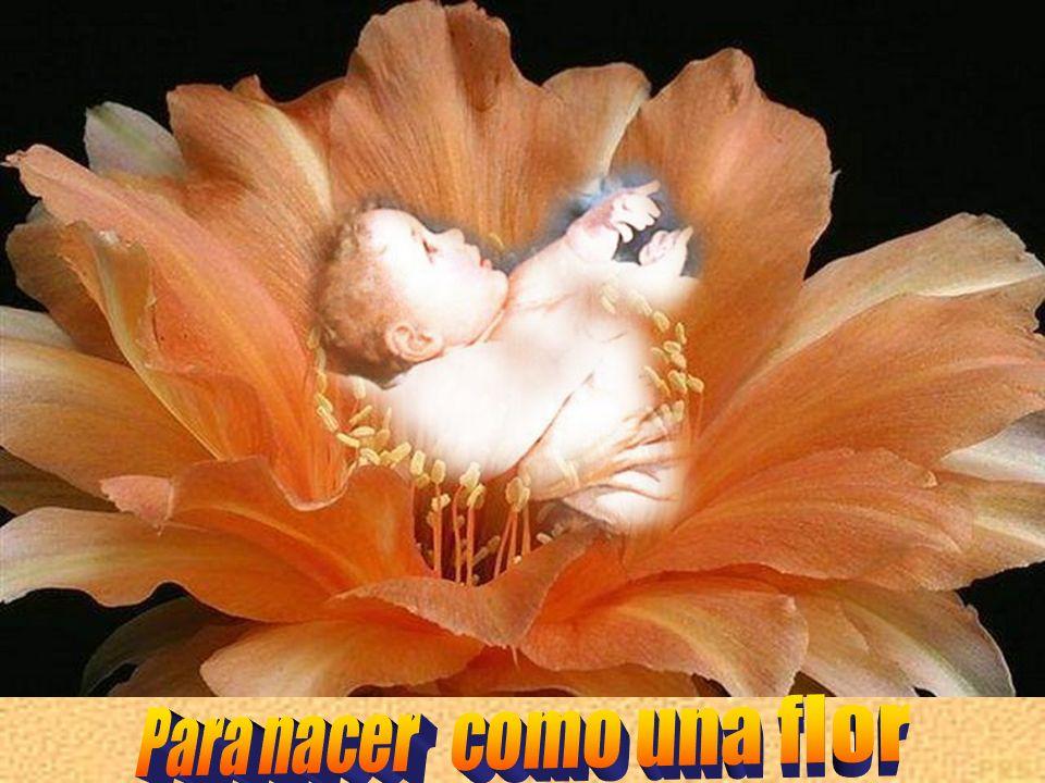 Para nacer como una flor