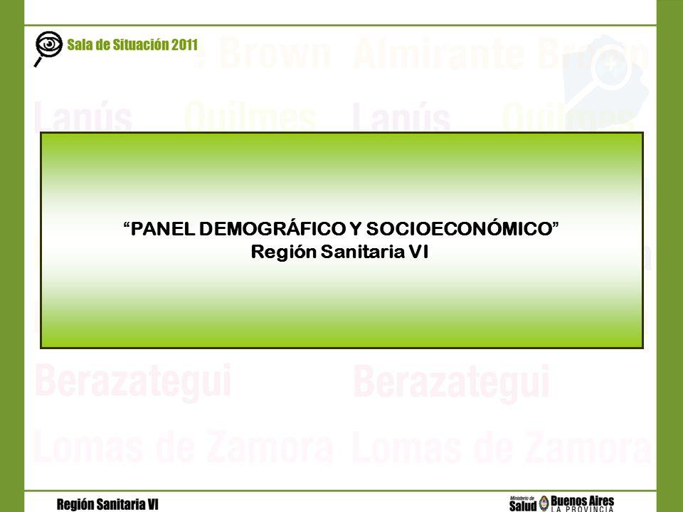 PANEL DEMOGRÁFICO Y SOCIOECONÓMICO
