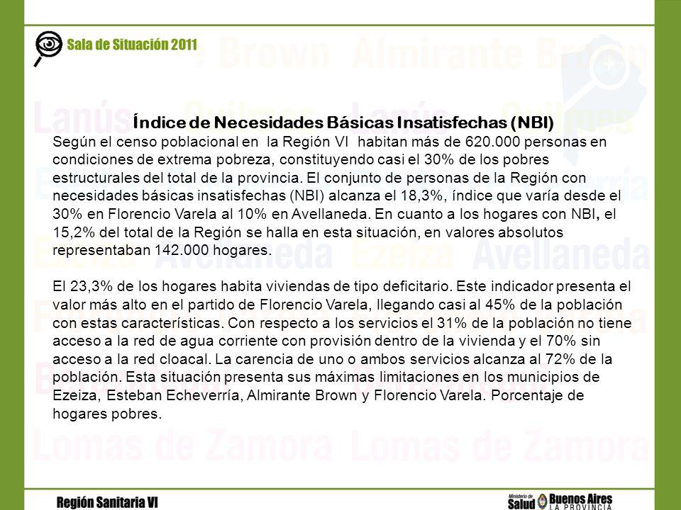 Índice de Necesidades Básicas Insatisfechas (NBI)