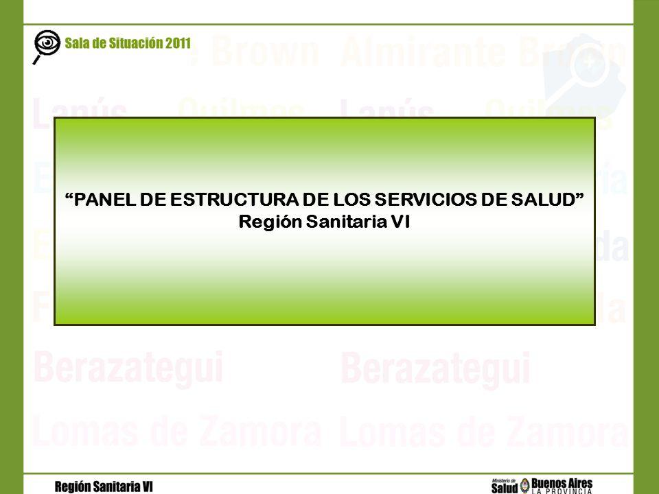 PANEL DE ESTRUCTURA DE LOS SERVICIOS DE SALUD