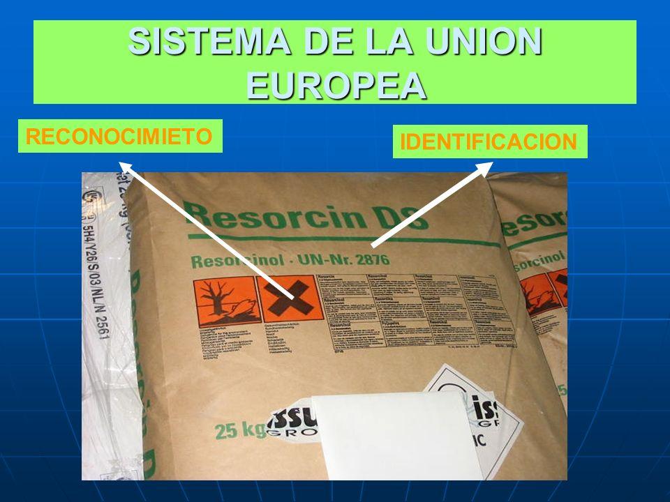 SISTEMA DE LA UNION EUROPEA