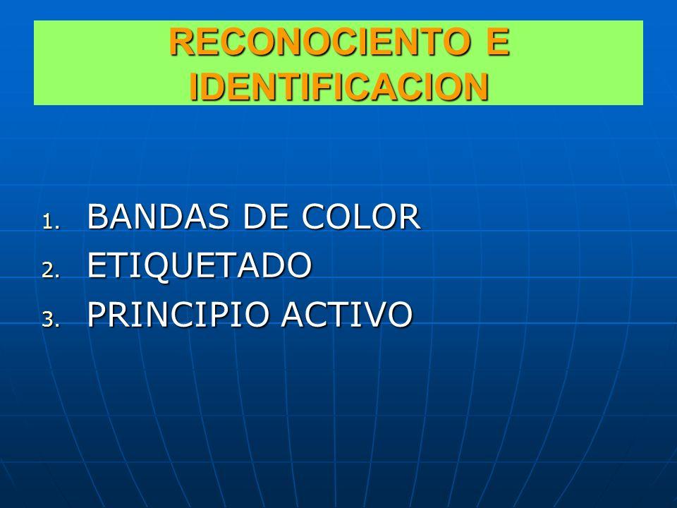 RECONOCIENTO E IDENTIFICACION