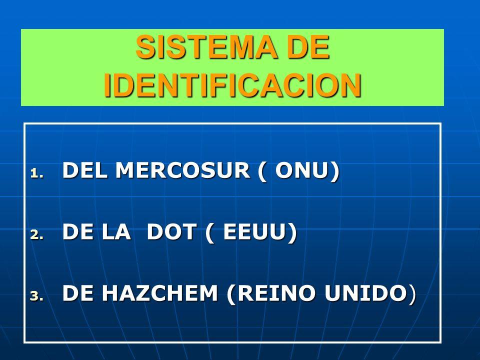 SISTEMA DE IDENTIFICACION