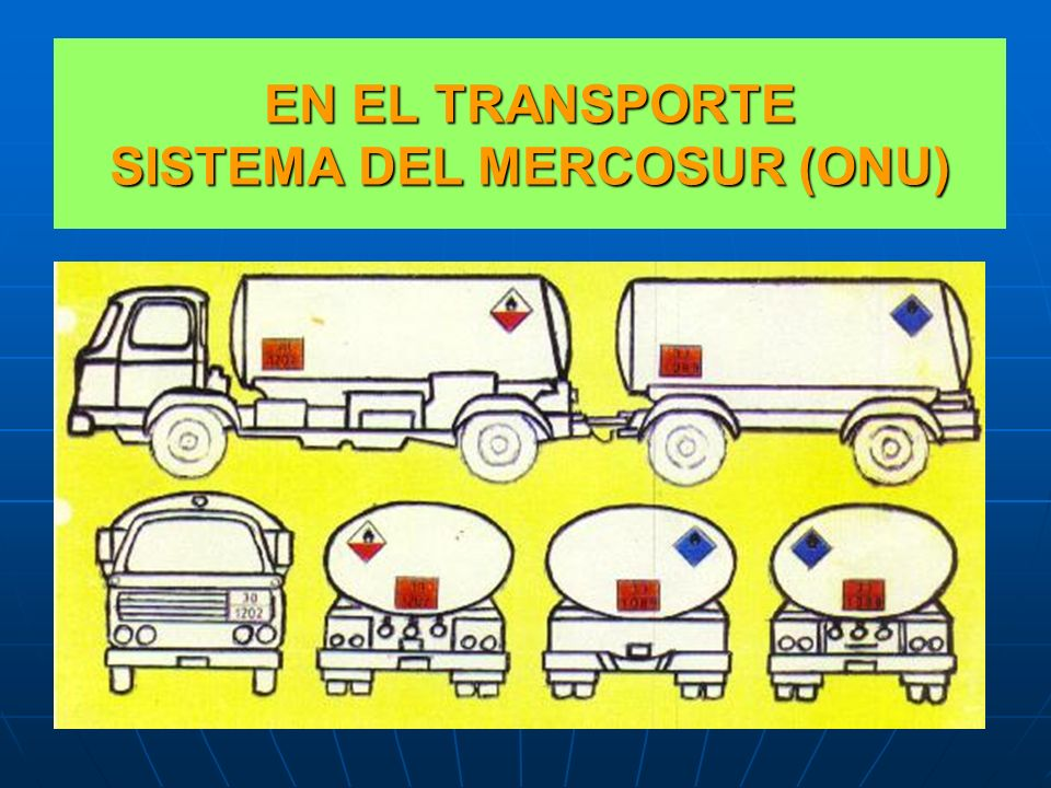 EN EL TRANSPORTE SISTEMA DEL MERCOSUR (ONU)