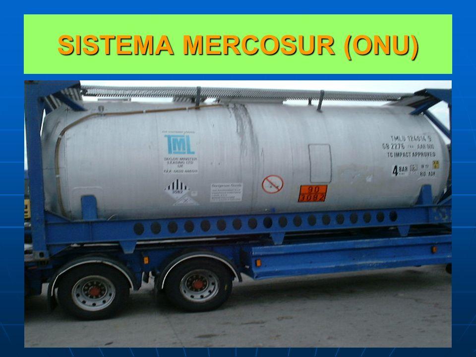 SISTEMA MERCOSUR (ONU)
