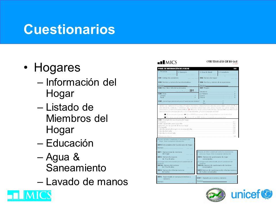 Cuestionarios Hogares Información del Hogar