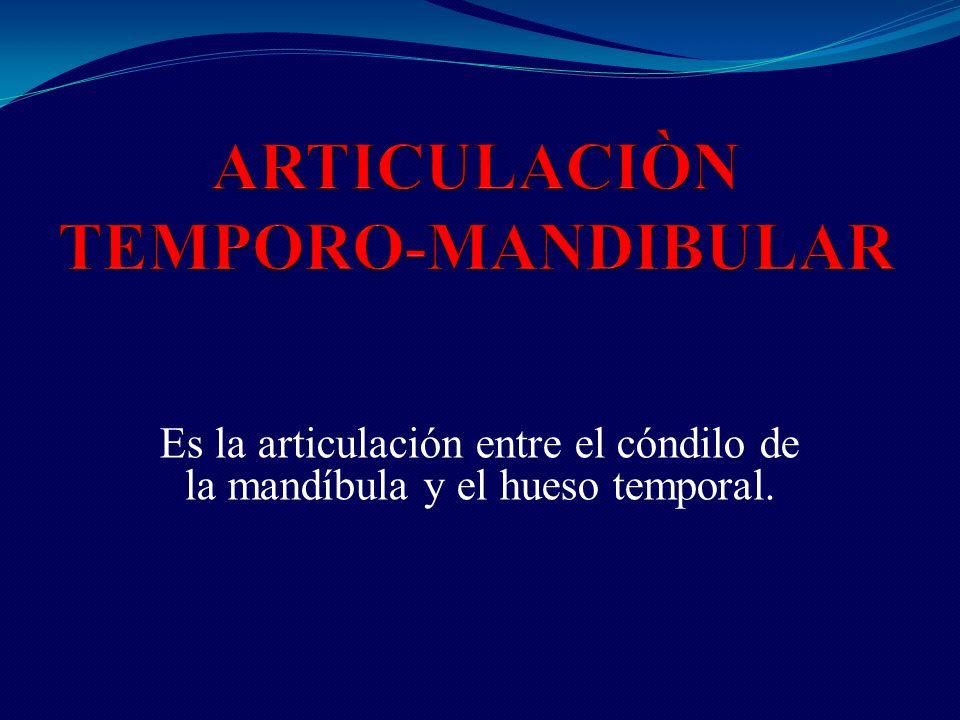 ARTICULACIÒN TEMPORO-MANDIBULAR - ppt video online descargar