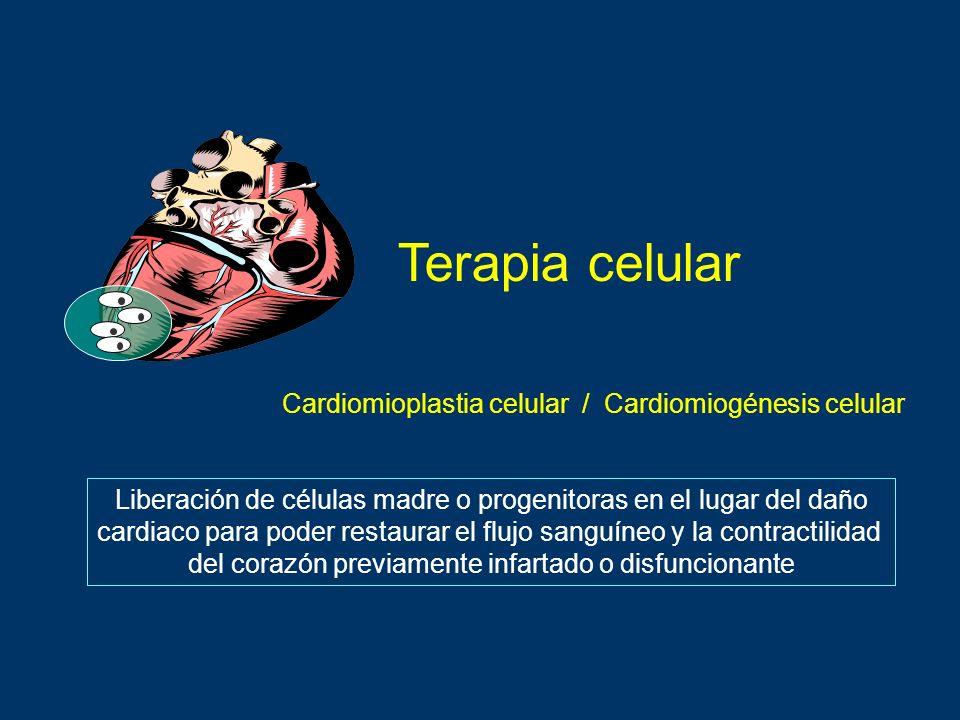 Terapia celular Cardiomioplastia celular / Cardiomiogénesis celular