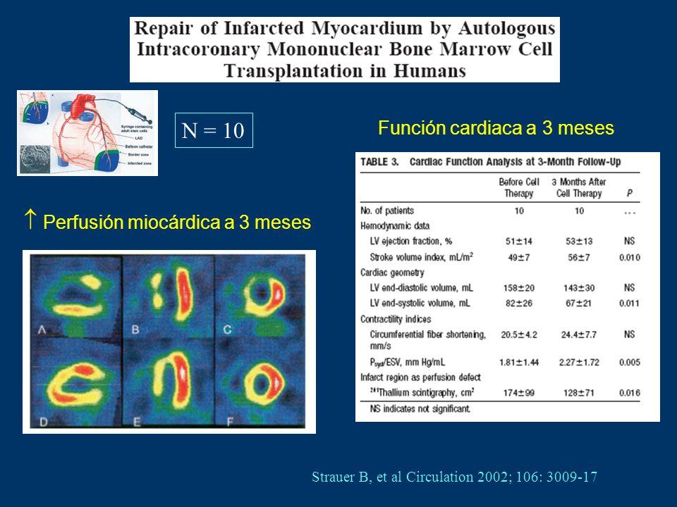  Perfusión miocárdica a 3 meses