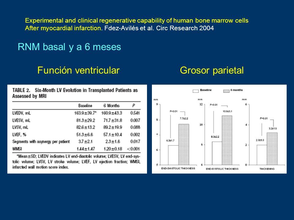 RNM basal y a 6 meses Función ventricular Grosor parietal
